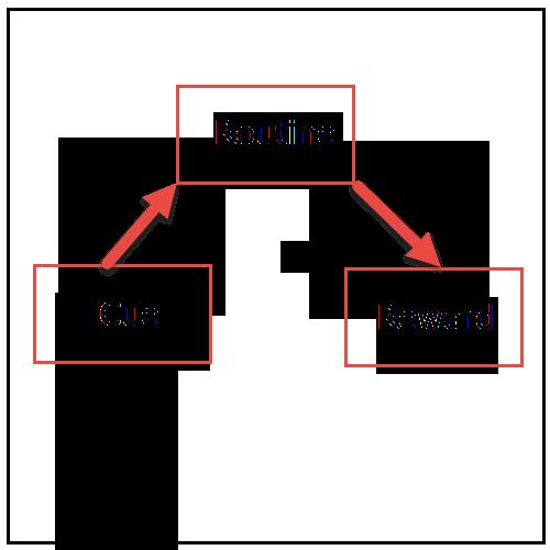 habit loop outline